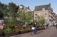 Nederland - Amsterdam- 2020.   Singel. Overgang Nieuwendijk Haarlemmerstraat. Er zijn bakken met planten en bomen in het midden van de weg geplaatst.    Foto ANP / Hollandse Hoogte / Berlinda van Dam