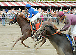 Strapping Groom  (no. 7), ridden by Junior Alvarado and trained by David Jacobson, wins the 34th running of the grade 1 Forego Stakes for three year olds and upward on August 31, 2013 at Saratoga Race Course in Saratoga Springs, New York.  (Bob Mayberger/ Eclipse Sportswire)