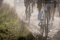 emerging from the dust...<br /> <br /> 53rd Le Samyn 2021<br /> ME (1.1)<br /> 1 day race from Quaregnon to Dour (BEL/205km)<br /> <br /> ©kramon