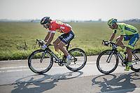 Peter Sagan (SVK/Tinkoff)<br /> <br /> 12th Eneco Tour 2016 (UCI World Tour)<br /> stage 3: Blankenberge-Ardooie (182km)