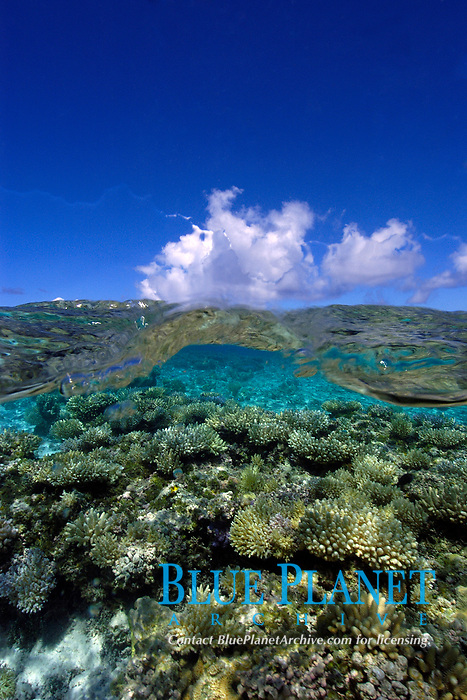 Split image of pristine coral reef and uninhabited island, Ailuk atoll, Marshall Islands, Pacific Ocean