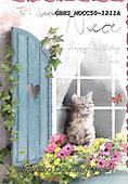 John, FLOWERS, BLUMEN, FLORES, paintings+++++,GBHSMOCC50-1211A,#F#, EVERYDAY