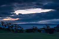 Farmland with macrocarpa trees on Otago Peninsula under dramatic skies, Coastal Otago, East Coast, New Zealand