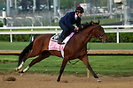 April 18, 2015 Kentucky Derby and Oaks contenders at Churchill Downs. Birdatthewire worked 4F in :47.20. Owner Forum Racing III, trainer Dale Romans. By Summer Bird x My Limit (Wagon Limit) ©Mary M. Meek/ESW/CSM
