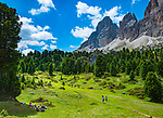 Italien, Suedtirol (Trentino - Alto Adige), oberhalb von Wolkenstein in Groeden: Wandern ueber Almwiesen vom Langkofel an der Sella-Joch-Passstrasse | Italy, South Tyrol (Trentino - Alto Adige), Dolomites, near Selva di Val Gardena: hiking through alpine pastures with Sasso Lungo mountain near Sella Pass Road