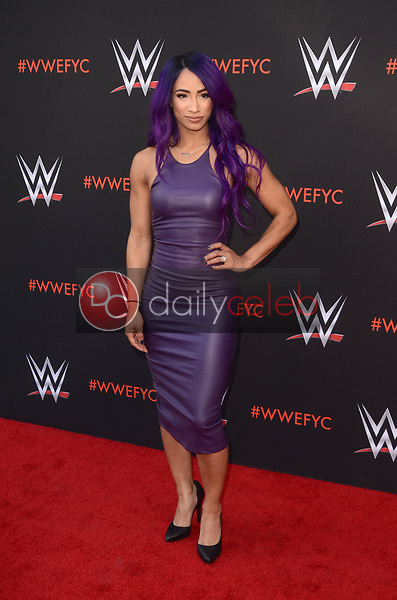 Sasha Banks<br /> at the WWE EMMY For Your Consideration Event, Saban Media Center, North Hollywood, CA 06-06-18<br /> David Edwards/Dailyceleb.com 818-249-4998