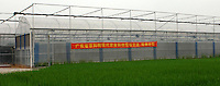 """The """"Space Breeding Exhibition Yard"""" at the Guangdong Academy of agricultural Sciences, 50 miles outside Guangzhou city. Chinese scientists claim that vegetables and fruit cultivated from the space seeds are larger, more nutritious and safe to eat...PHOTO BY SINOPIX..PHOTO BY SINOPIX"""