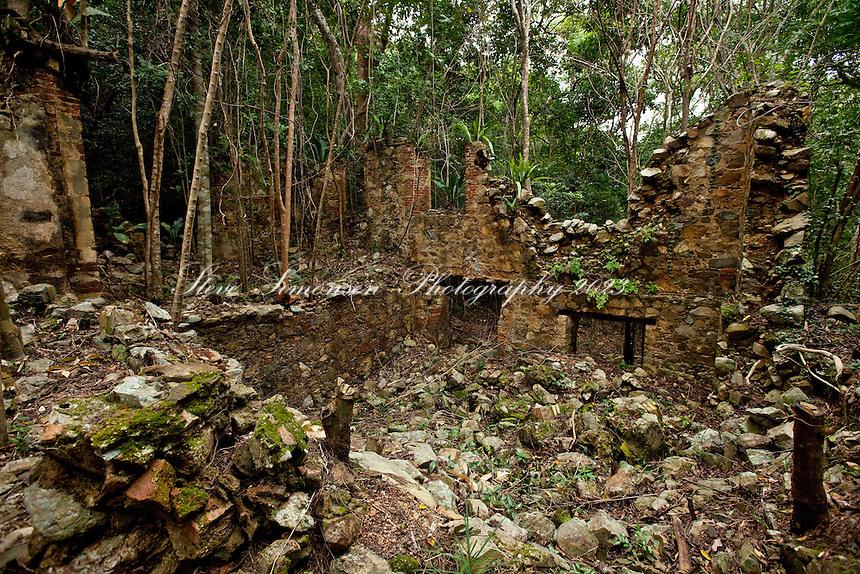 Josie Gut ruins along the Reef Bay Trail<br /> Virgin Islands National Park<br /> St John, U.S. Virgin Islands
