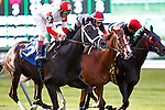 June 6, 2014: # 3 Charming Kitten, John Velazquez up, wins the 1st running of the Belmont Gold Cup Invitational, two miles on the turf for four-year-olds and upward at Belmont Park in Elmont, PA. He is owned by Ken and Sarah Ramsey and trained by Todd Pletcher. ©Joan Fairman Kanes/ESW/CSM