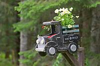 Mailbox in the coastal community of Gustavus, Alaska