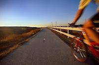 Rider on bike path.