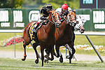June 7, 2014: Undrafted (left), John Velazquez up, wins the 31st running of the Grade III Jaipur Invitational, six furlongs on the inner turf at Belmont Park , Elmont, NY Trainer is Wesley Ward.  ©Joan Fairman Kanes/ESW/CSM