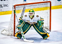 26 January 2019:  University of Vermont Catamount Goaltender Stefanos Lekkas, a Junior from Elburn, IL, in third period action against the Merrimack College Warriors at Gutterson Fieldhouse in Burlington, Vermont. The Catamounts defeated the Warriors 4-3 in overtime to take both games of their weekend America East conference series. Mandatory Credit: Ed Wolfstein Photo *** RAW (NEF) Image File Available ***