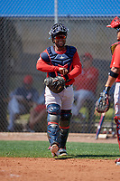 Boston Red Sox catcher Roldani Baldwin (49) during a Minor League Spring Training game against the Tampa Bay Rays on March 25, 2019 at the Charlotte County Sports Complex in Port Charlotte, Florida.  (Mike Janes/Four Seam Images)