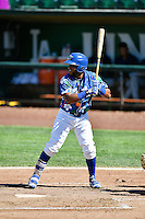 Samuel Ortiz (14) of the Ogden Raptors at bat against the Helena Brewers in Pioneer League action at Lindquist Field on July 16, 2016 in Ogden, Utah. Ogden defeated Helena 5-4. (Stephen Smith/Four Seam Images)