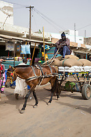 Senegal, Touba.  Horse-drawn Carts Bring Goods to Market for Sale.