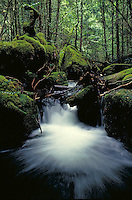 Walls of Jerusalem National Park, located on the island of Tasmania. Australia Tasmania.