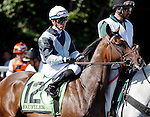 ARLINGTON HEIGHTS, IL - AUGUST 13: Faufiler #12, ridden by Jose Valdiva Jr., during the post parade before the Beverly D. Stakes at Arlington International Racecourse on August 13, 2016 in Arlington Heights, Illinois. (Photo by Jon Durr/Eclipse Sportswire/Getty Images)