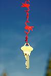 House Key Hanging from Monkeys