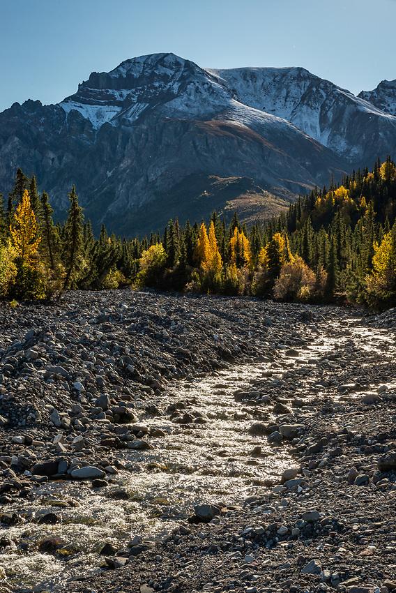 Skookum Creek, Nabesna Road, Alaska.