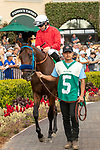 DEL MAR, CA  AUGUST 10:  #5 Collusion Illusion, ridden by Joseph Talamo, in the paddock of the Best Pal Stakes (Grade ll) on August 10, 2019 at Del Mar Thoroughbred Club in Del Mar, CA. (Photo by Casey Phillips/Eclipse Sportswire/CSM)