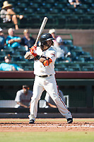 Scottsdale Scorpions second baseman C.J. Hinojosa (8), of the San Francisco Giants organization, at bat during an Arizona Fall League game against the Mesa Solar Sox at Scottsdale Stadium on November 2, 2018 in Scottsdale, Arizona. The shortened seven-inning game ended in a 1-1 tie. (Zachary Lucy/Four Seam Images)