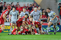 Ruki Tipuna of Scarlets (centre) passes during the LV= Cup first round match between Scarlets and Leicester Tigers at Parc y Scarlets (Photo by Rob Munro, Fotosports International)