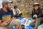 Andean Mountain Cat (Leopardus jacobita) veterinarian, Deana Clifford, biologist, Juan Reppucci, and conservationist, Jorge Luiz, checking medical supplies for collaring, Abra Granada, Andes, northwestern Argentina