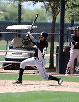 Samil Polanco - Chicago White Sox 2019 extended spring training (Bill Mitchell)