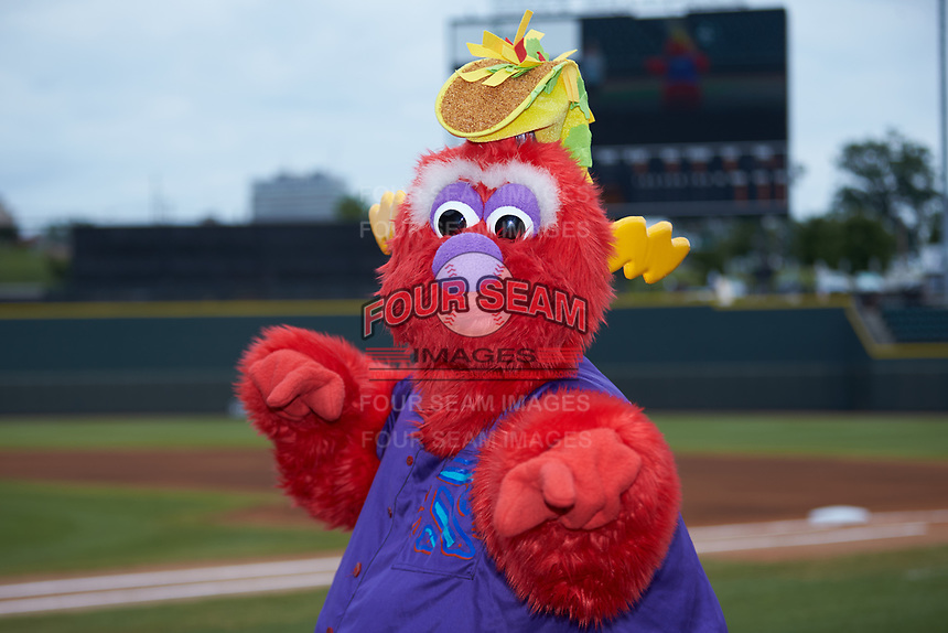 "Winston-Salem Rayados mascot ""Bolt"" poses for a photo prior to the game against the Lynchburg Hillcats at BB&T Ballpark on June 23, 2019 in Winston-Salem, North Carolina. The Hillcats defeated the Rayados 12-9 in 11 innings. (Brian Westerholt/Four Seam Images)"