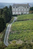 Europe/France/Pays de la Loire/Maine-et-Loire/Environ d'Angers : AOC Anjou Savennières  (Coulée de Serrant) - Château et vignes