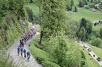 peloton led by Team Movistar up the Col du Pré (HC/1748m/12.6km@7.7%)<br /> <br /> 73rd Critérium du Dauphiné 2021 (2.UWT)<br /> Stage 7 from Saint-Martin-le-Vinoux to La Plagne (171km)<br /> <br /> ©kramon
