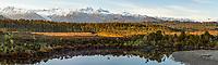 Five Mile Lagoon with Aoraki Mount Cook, Mount Tasman and Franz Josef Glacier centre left, Westland Tai Poutini National Park, West Coast, UNESCO World Heritage Area, South Westland, New Zealand, NZ