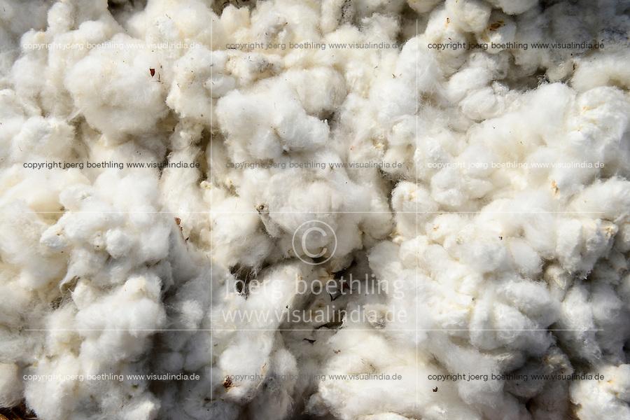BURKINA FASO , Koumbia, cotton harvest at farm of BOGNINI BOYOUN , the cotton is sold to SOFITEX company / Baumwolle Ernte auf der Farm von BOGNINI BOYOUN, die Baumwolle wird an die SOFITEX verkauft