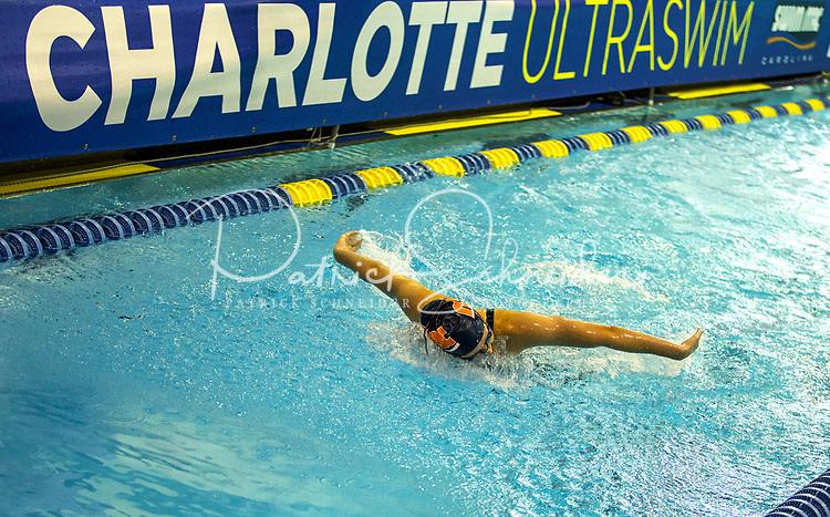 Photography of the 2017 Charlotte Ultra Swim, held at the Mecklenburg Aquatic Center in Charlotte, North Carolina.<br /> <br /> Charlotte Photographer - PatrickSchneiderPhoto.com