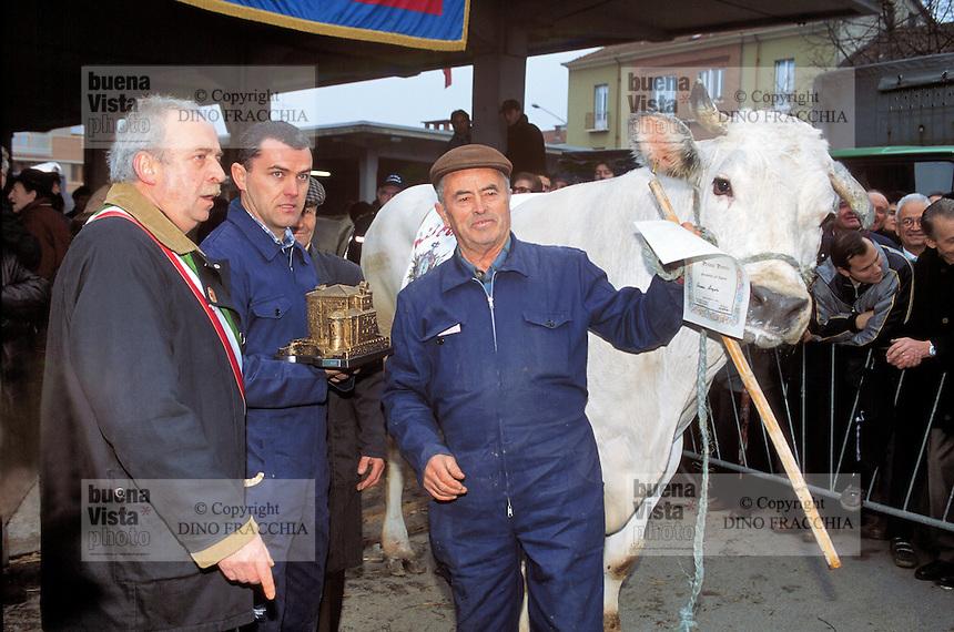 """- feast of the """"fat ox"""" in Carrù (Cuneo), fair of """"white Piedmontese"""" race  livestock, one of most ancient in Italy ....- sagra del """"bue grasso"""" a Carrù (Cuneo), fiera del bestiame di razza """"bianca piemontese"""", una delle più antiche in Italia"""