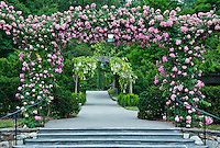 Rose arbor and path, Longwood  Gardens, Kennet Square, Pennsylvania
