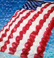 U.S. Flag. SX-70 Polaroid Print Manipulation.