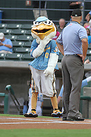 Myrtle Beach Pelicans mascot Splash Pelican talking to the umpire before a game against the Lynchburg Hillcats at Ticketreturn.com Field at Pelicans Park on September 1, 2012 in Myrtle Beach, South Carolina. Myrtle Beach defeated Lynchburg by the score of 3-2. (Robert Gurganus/Four Seam Images)