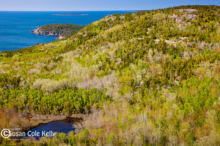 Springtime view of Gorham Mountain from the Beehive Trail in Acadia National Park, Downeast, ME, USA