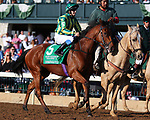 LEXINGTON, KY - October 14, 2017. #5 Unforgetable Filly (GB) and jockey Josephine Gordon in the Queen Elizabeth 2 Challenge Cup at Keeneland Race Course.  Lexington, Kentucky. (Photo by Candice Chavez/Eclipse Sportswire/Getty Images)