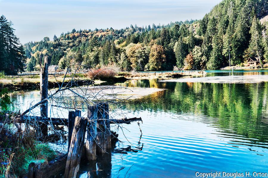 Fall color along the Tahuya River near its mouth on Hood Canal.  Kitsap Peninsula, near Belfair, Washington.