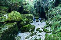 Hikers in Cave Creek in Punakaiki, Paparoa National Park, West Coast, Buller Region, New Zealand