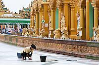 Myanmar, Burma.  Shwedagon Pagoda, Yangon, Rangoon.  Volunteer Worker Cleaning the Floor of the Courtyard.