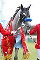 Horse Racing : Sprinters Stakes at Nakayama Racecourse
