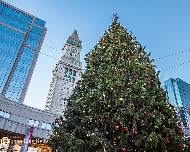 Christmas Tree under the Custom Tower, Boston, MA, USA