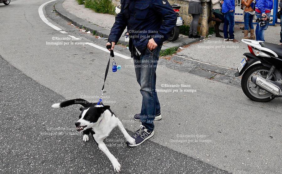 - NAPOLI 22 APR  2014 -  cane che ringhia  al guinzaglio