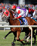 ARLINGTON HEIGHTS, IL - AUGUST 13: Scissors and Tape #3, ridden by Shaun Bridgmohan, leads the field as they pass the grandstands for the first time during the Secretariat Stakes at Arlington International Racecourse on August 13, 2016 in Arlington Heights, Illinois. (Photo by Jon Durr/Eclipse Sportswire/Getty Images)