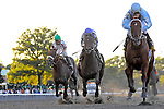 03 October 10: Haynesfield snd jockey Ramon Dominguez pull as wire-to-wire upset win in the Jockey Club Gold Cup at Belmont Park in Elmont, New York