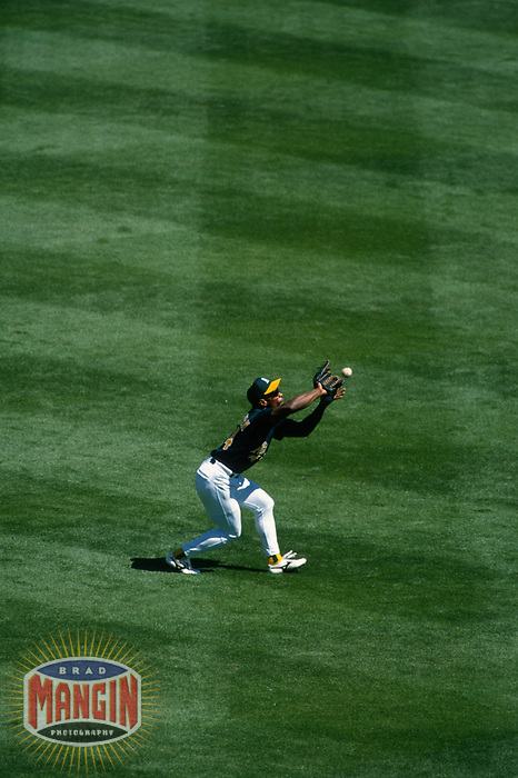 OAKLAND, CA - Rickey Henderson of the Oakland Athletics catches a fly ball in left field during a game at the Oakland Coliseum in Oakland, California in 1995. (Photo by Brad Mangin)